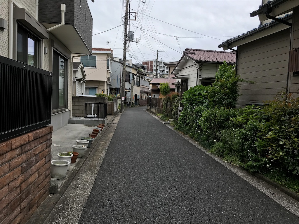f:id:yokohamamiuken:20190509154854j:image