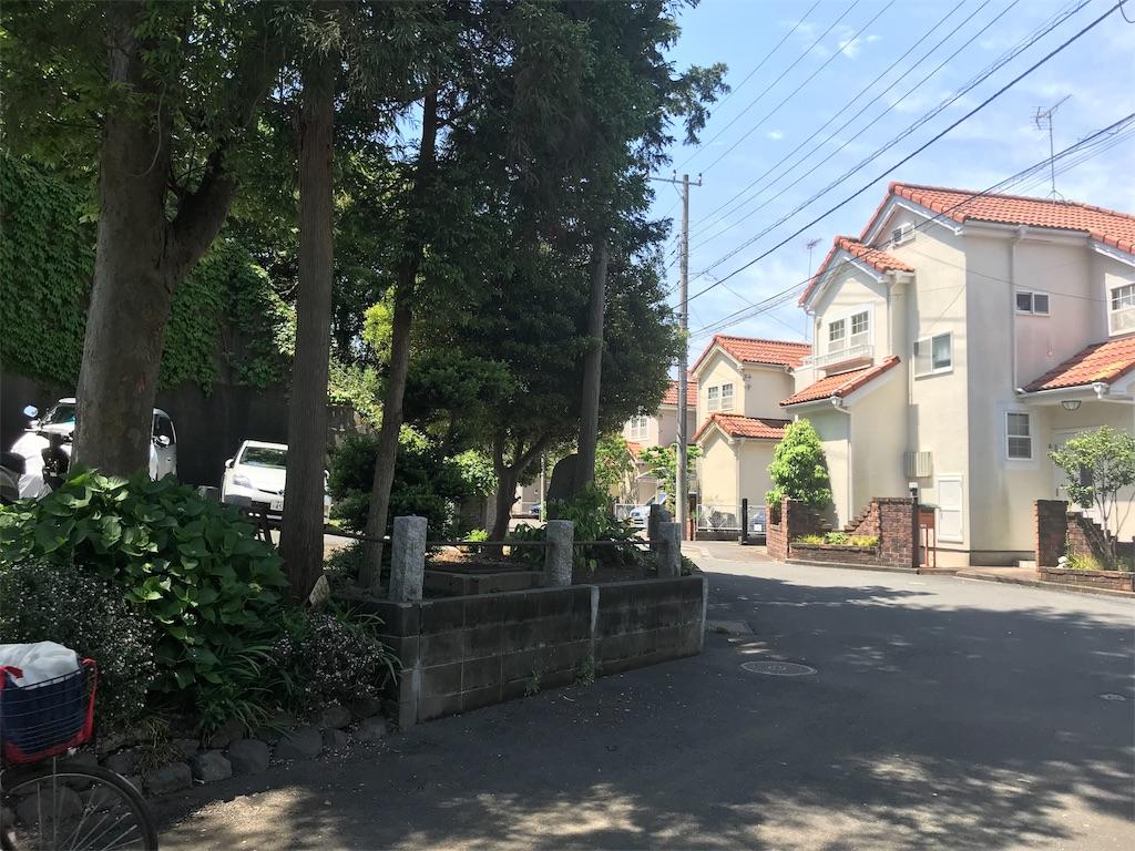 f:id:yokohamamiuken:20190522153630j:image