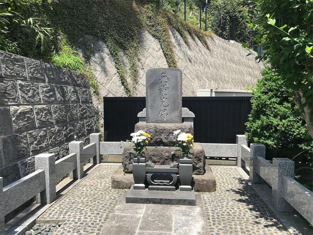 f:id:yokohamamiuken:20190522154720j:image