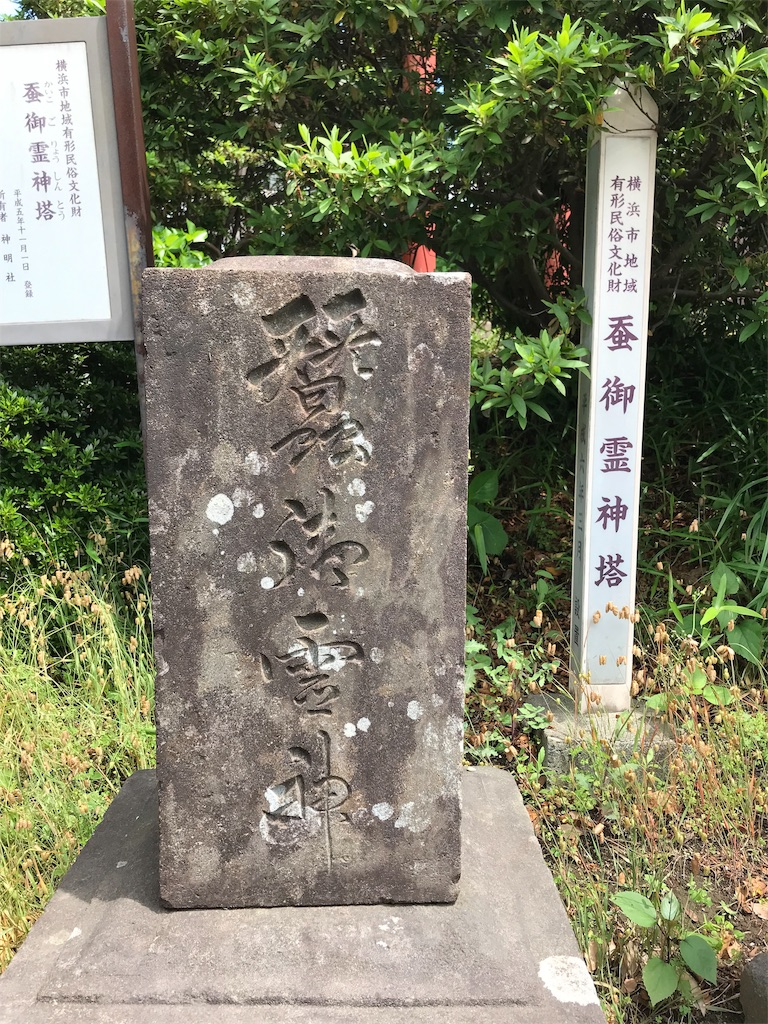 f:id:yokohamamiuken:20190522155753j:image