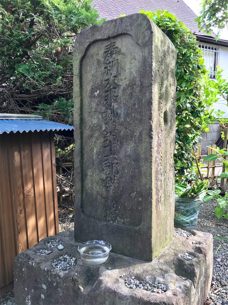 f:id:yokohamamiuken:20190529212222j:image