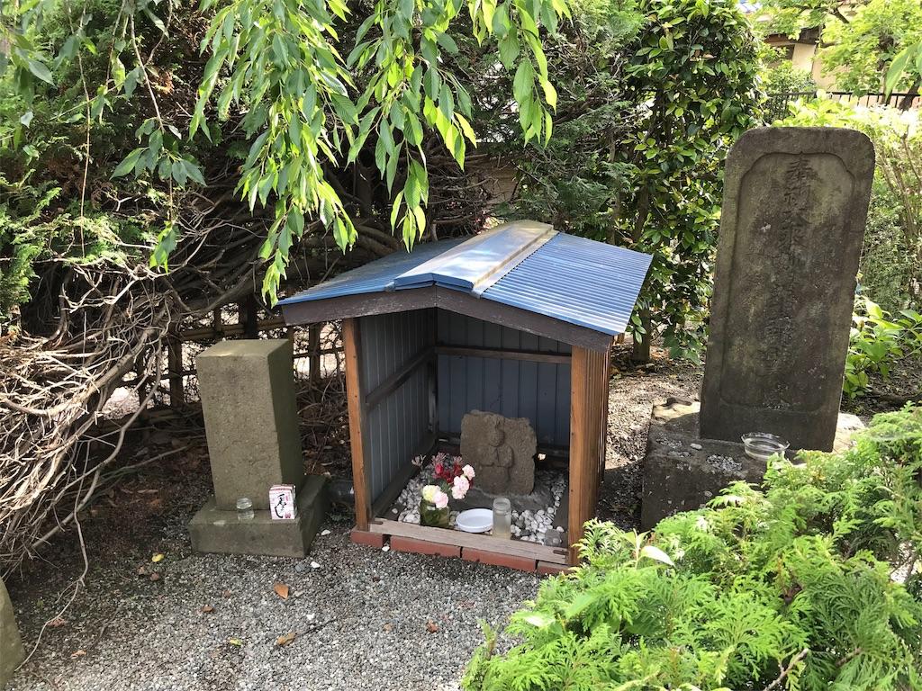 f:id:yokohamamiuken:20190529212241j:image