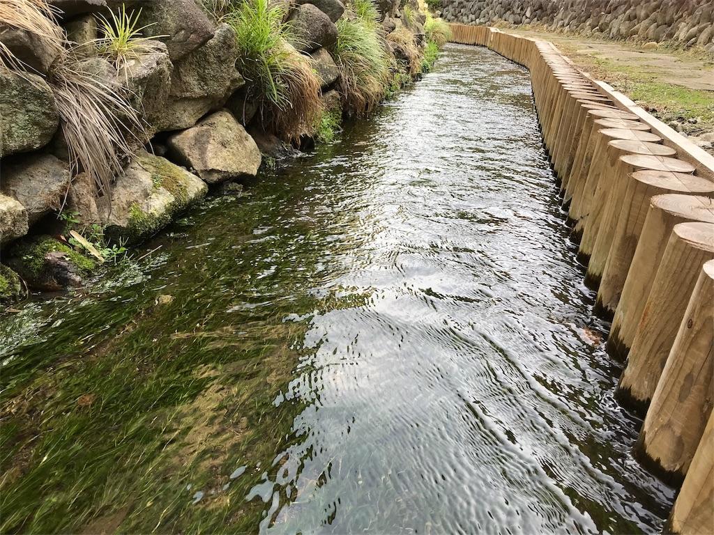 f:id:yokohamamiuken:20190529212259j:image