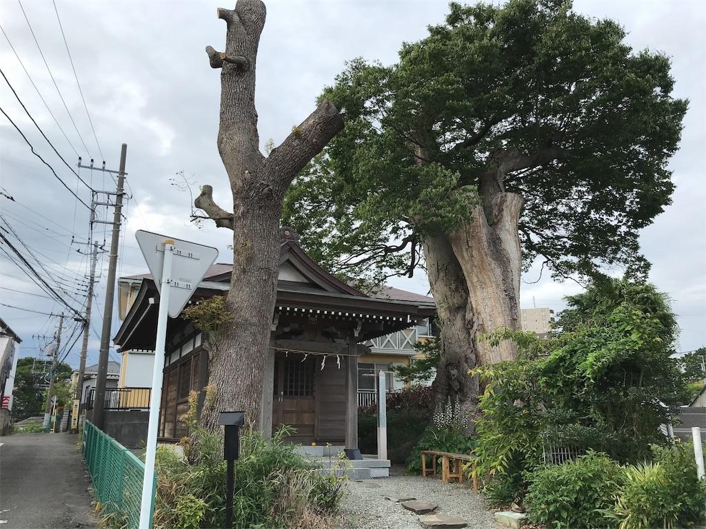 f:id:yokohamamiuken:20190529212331j:image