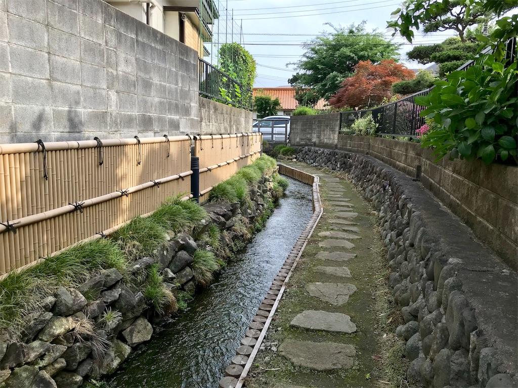 f:id:yokohamamiuken:20190529212400j:image