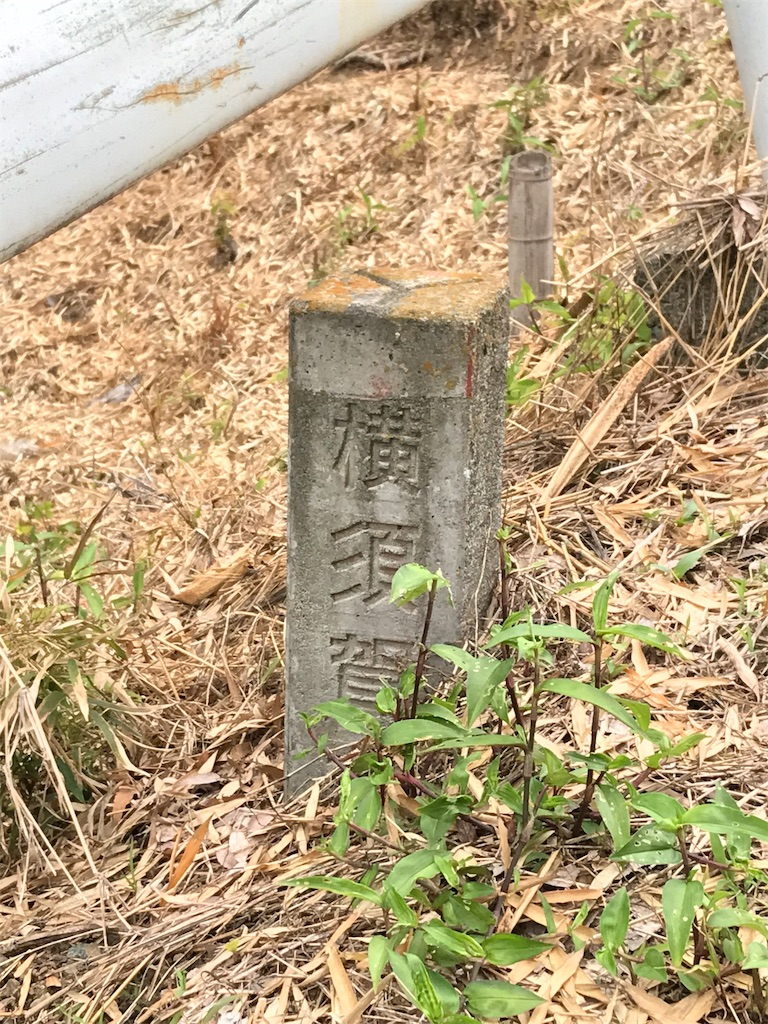 f:id:yokohamamiuken:20190529212452j:image