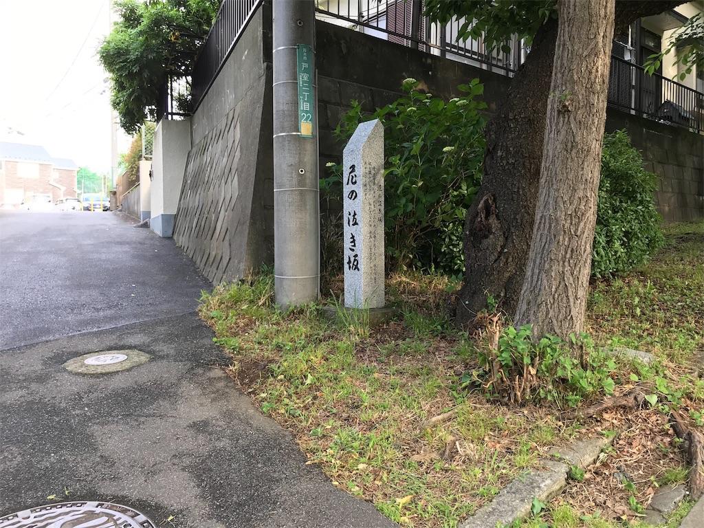 f:id:yokohamamiuken:20190530172143j:image