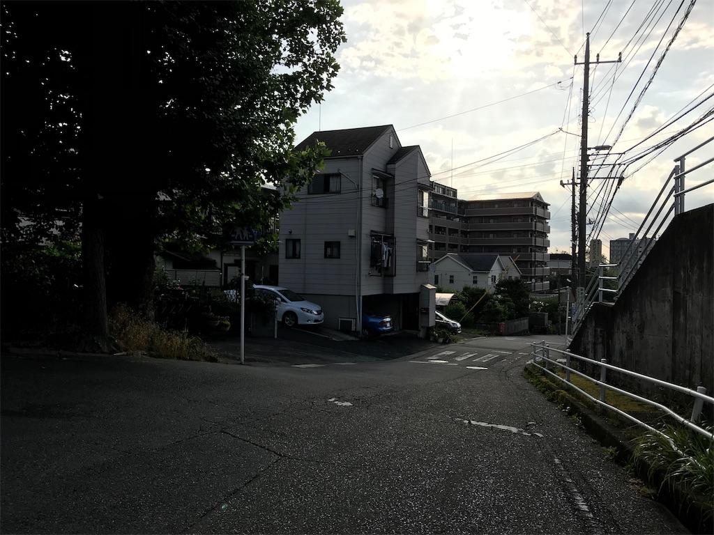 f:id:yokohamamiuken:20190530172206j:image