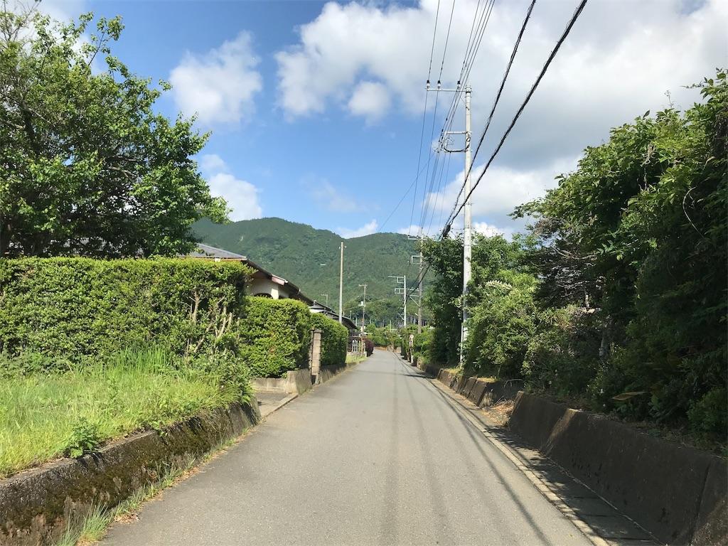 f:id:yokohamamiuken:20190530172645j:image