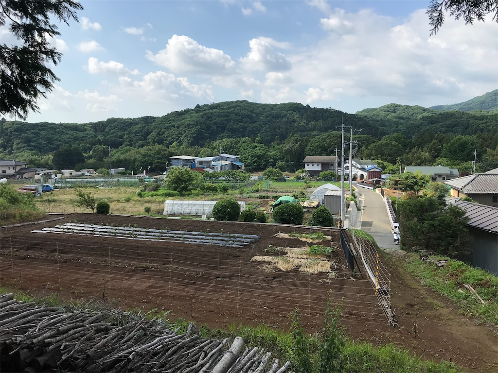 f:id:yokohamamiuken:20190530172953j:image