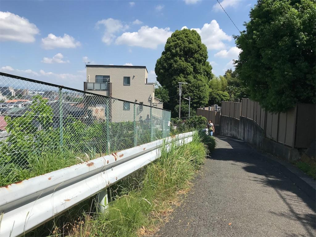 f:id:yokohamamiuken:20190530173104j:image