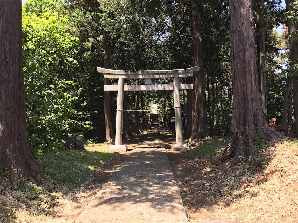 f:id:yokohamamiuken:20190530173802j:image