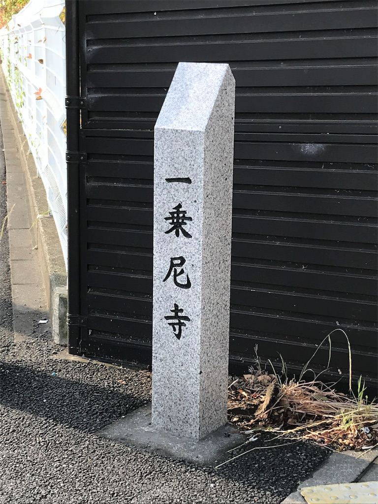 f:id:yokohamamiuken:20190602104209j:image