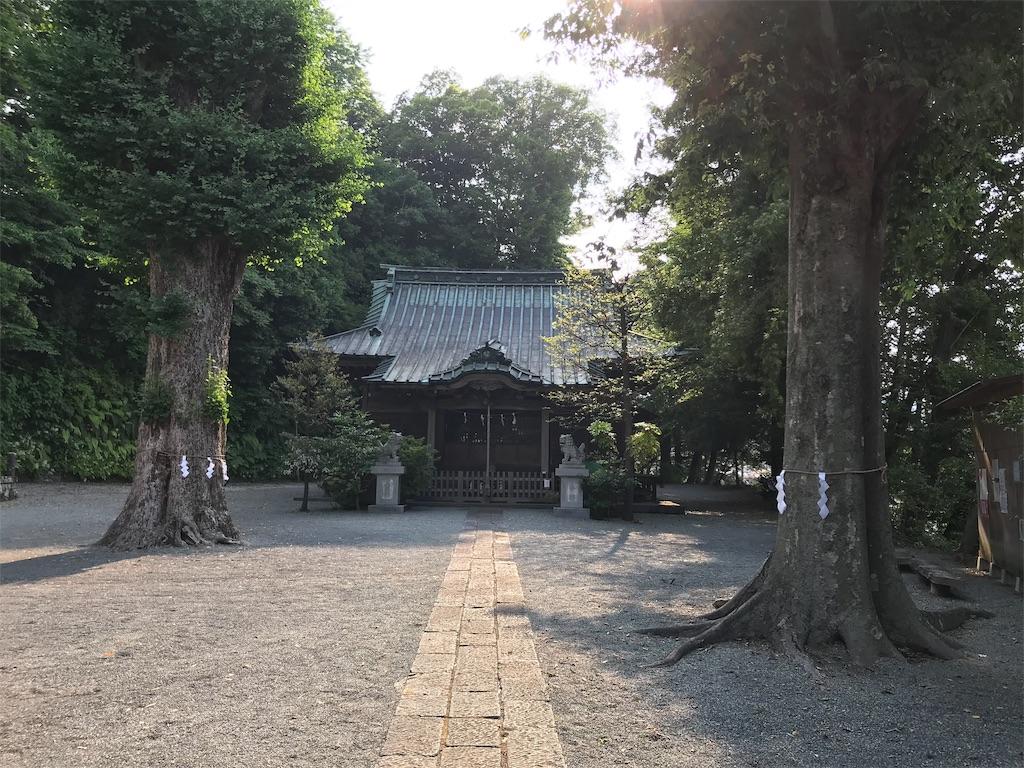 f:id:yokohamamiuken:20190607074318j:image