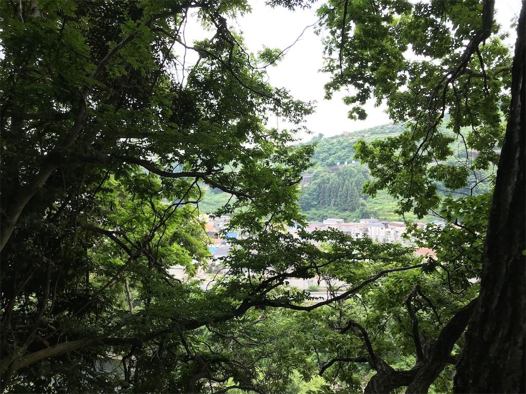 f:id:yokohamamiuken:20190607074650j:image