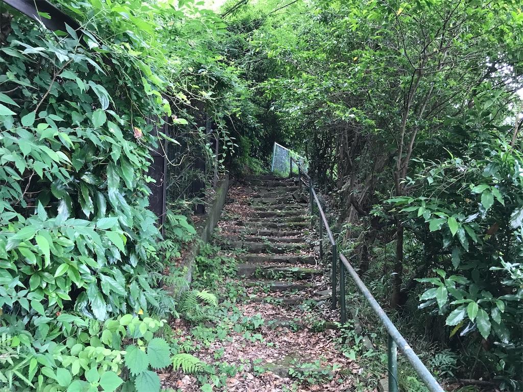 f:id:yokohamamiuken:20190607074654j:image