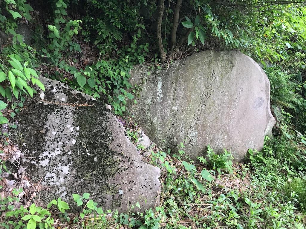 f:id:yokohamamiuken:20190607074710j:image