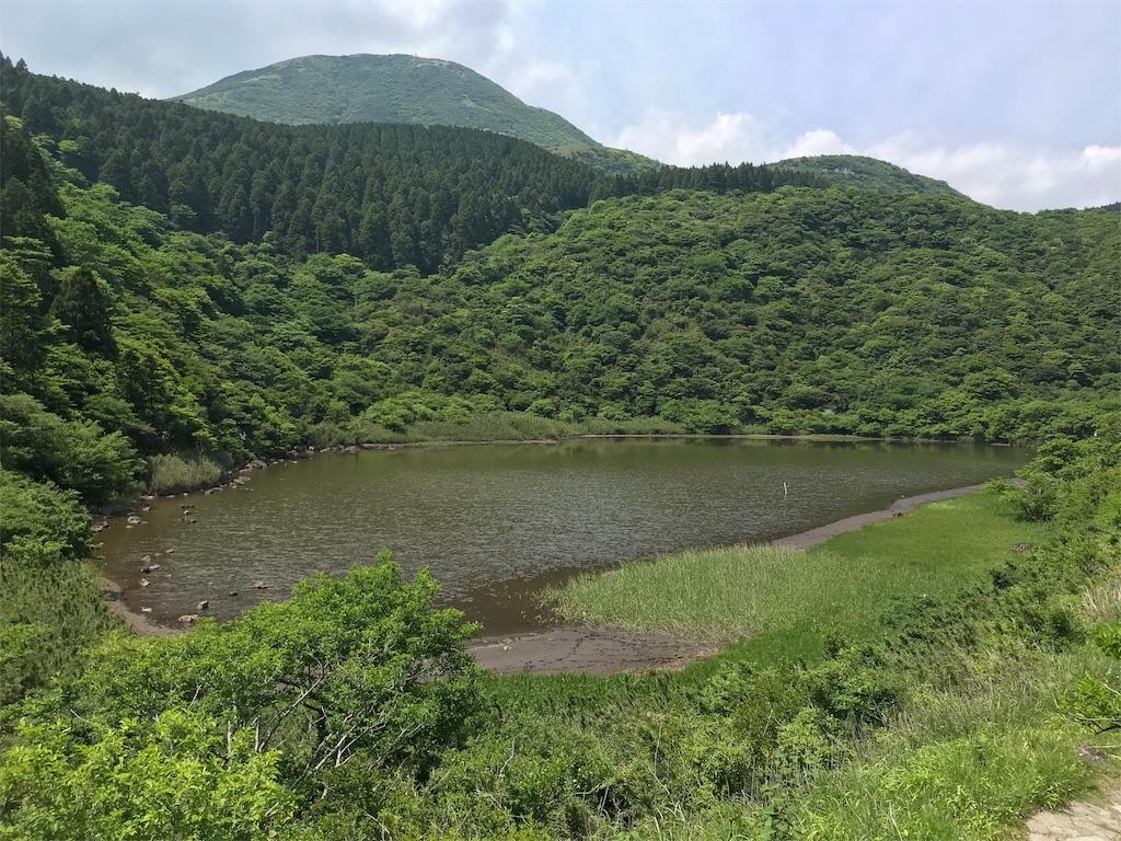 f:id:yokohamamiuken:20190607075514j:image