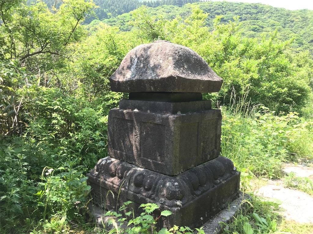 f:id:yokohamamiuken:20190607080606j:image