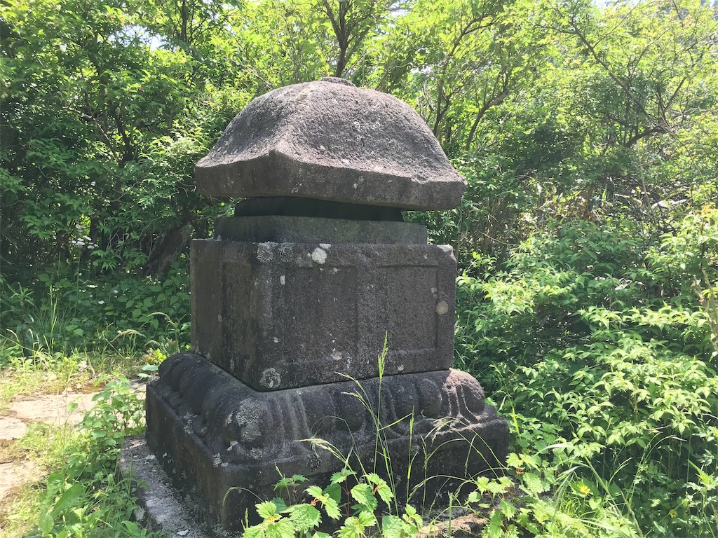 f:id:yokohamamiuken:20190607080617j:image