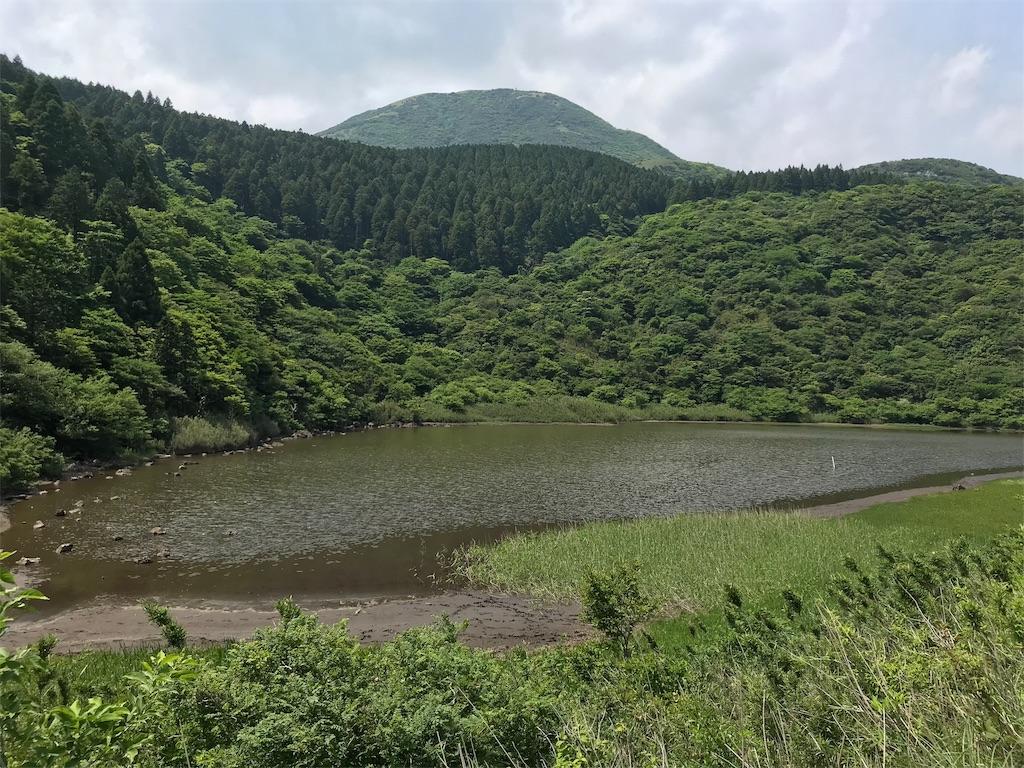 f:id:yokohamamiuken:20190607080739j:image