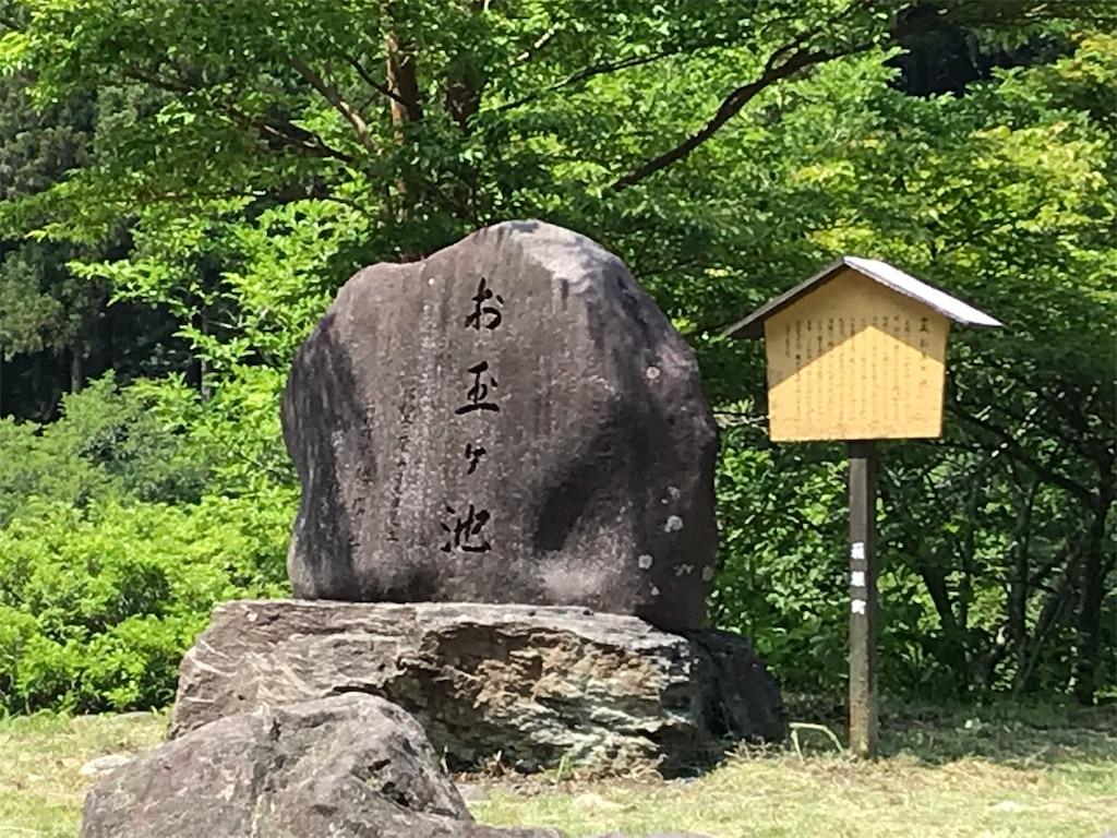 f:id:yokohamamiuken:20190607080847j:image