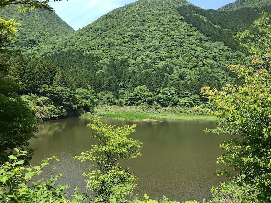 f:id:yokohamamiuken:20190607080904j:image
