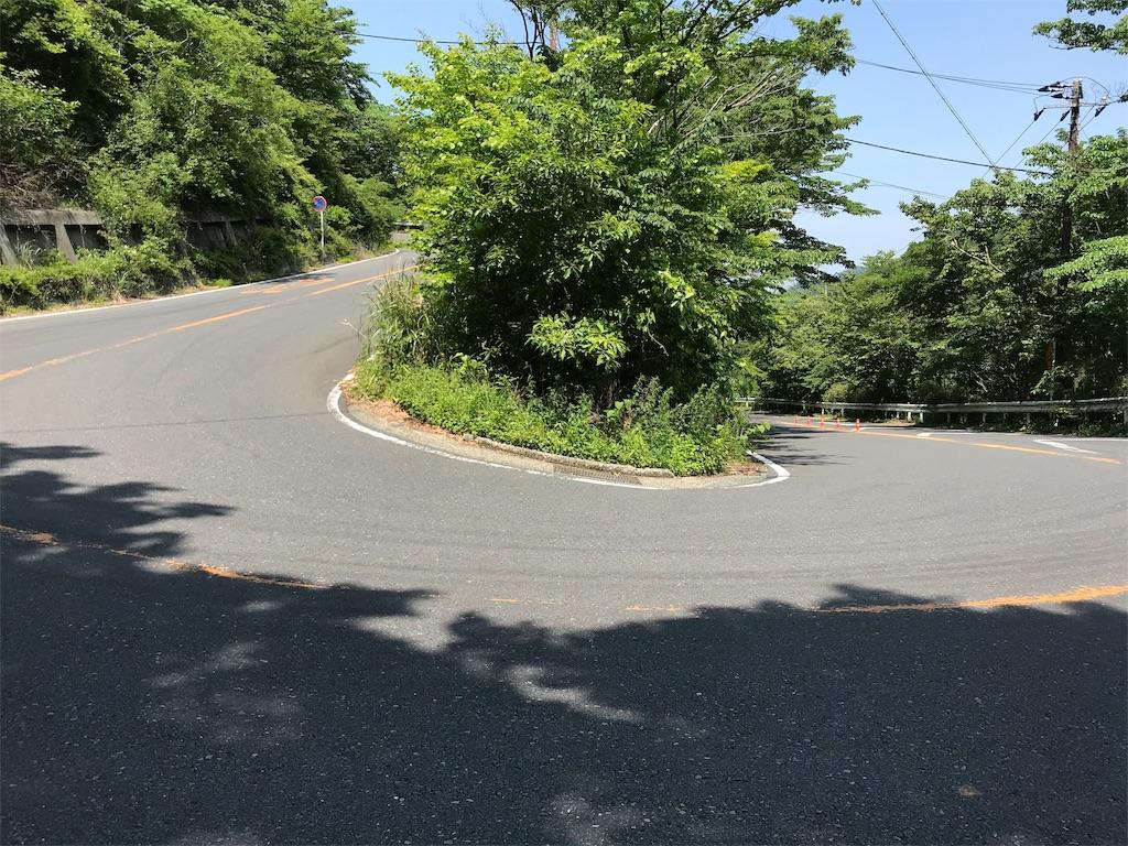 f:id:yokohamamiuken:20190607081023j:image