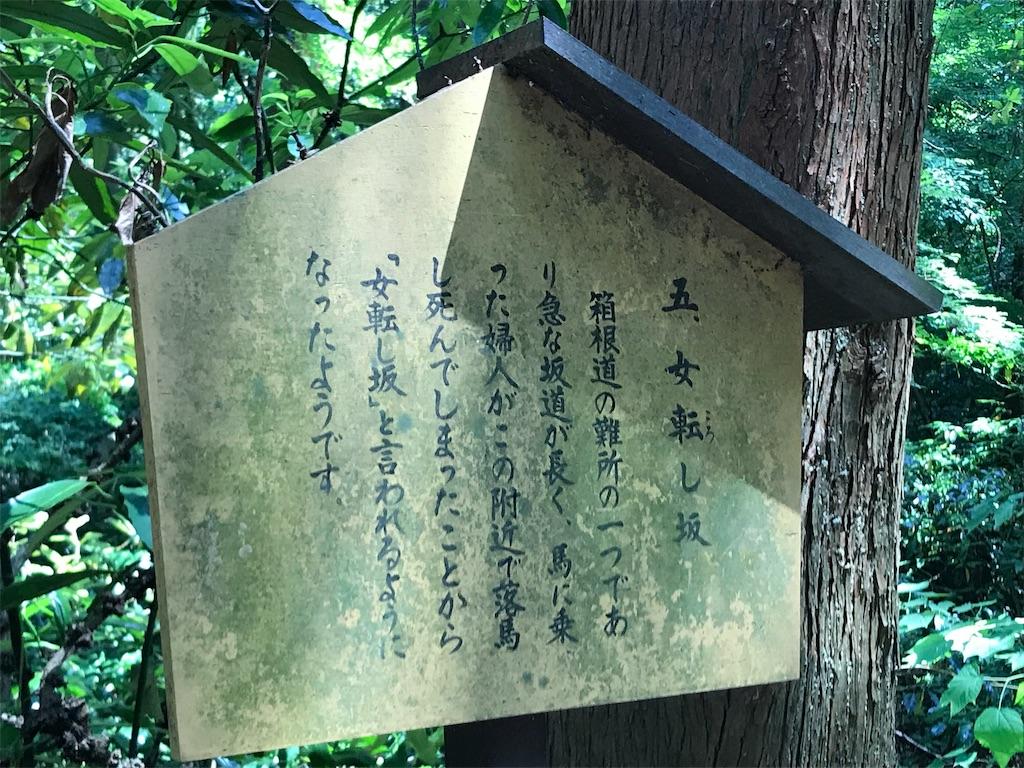 f:id:yokohamamiuken:20190607081210j:image