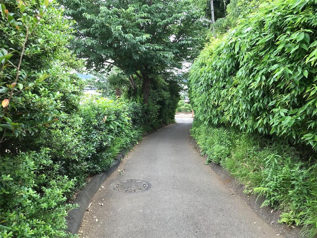 f:id:yokohamamiuken:20190607083544j:image