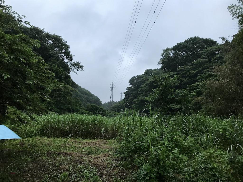 f:id:yokohamamiuken:20190609213046j:image