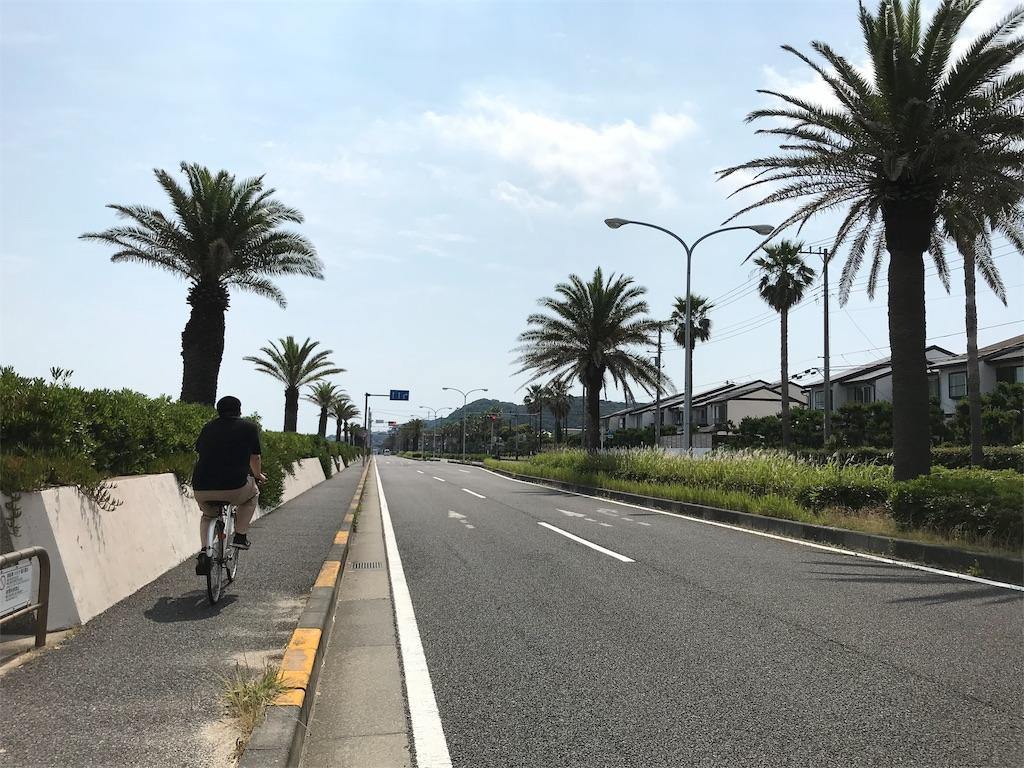 f:id:yokohamamiuken:20190620094454j:image