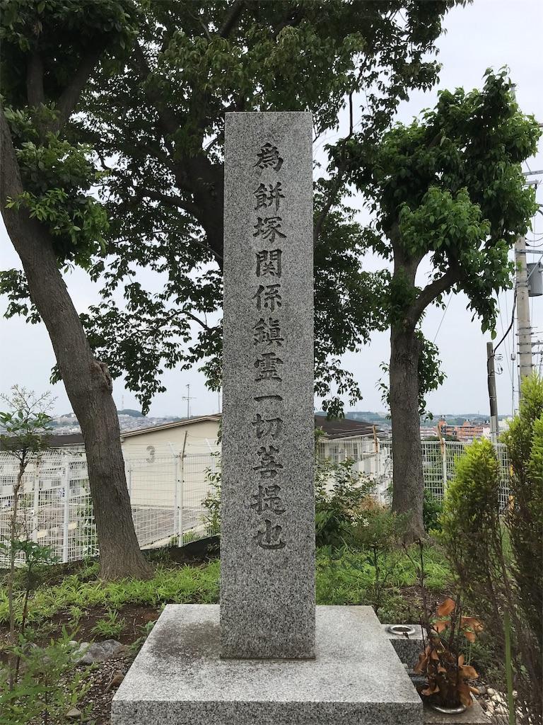 f:id:yokohamamiuken:20190702185744j:image