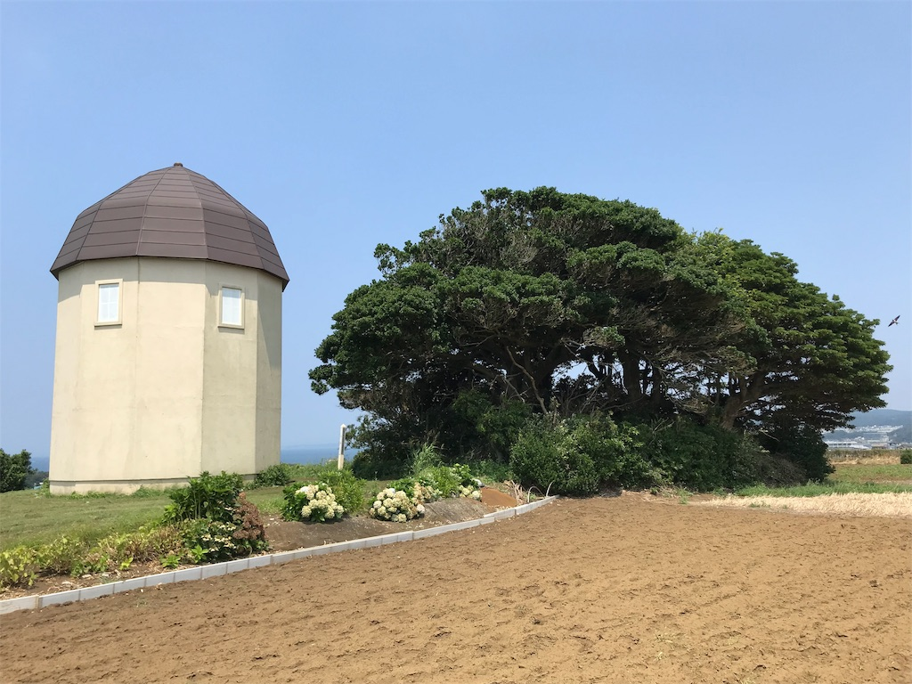f:id:yokohamamiuken:20190731225230j:image