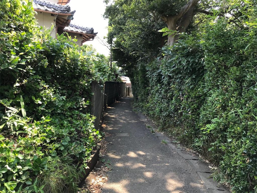 f:id:yokohamamiuken:20190801082339j:image