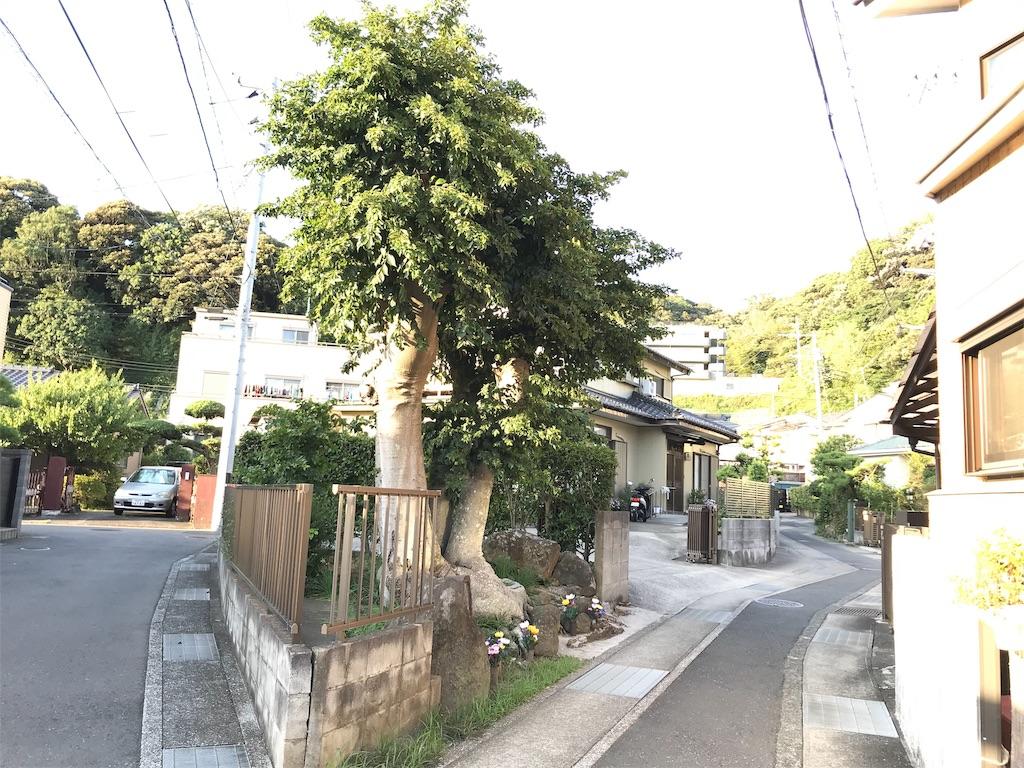 f:id:yokohamamiuken:20190902225103j:image