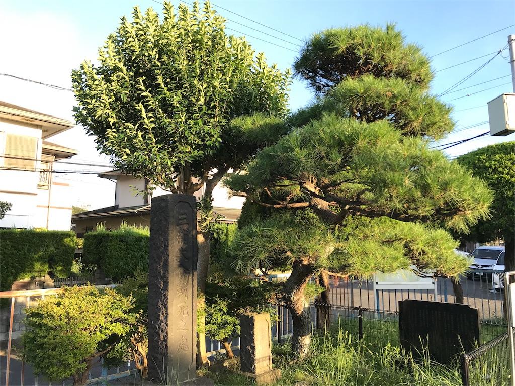 f:id:yokohamamiuken:20190902225500j:image