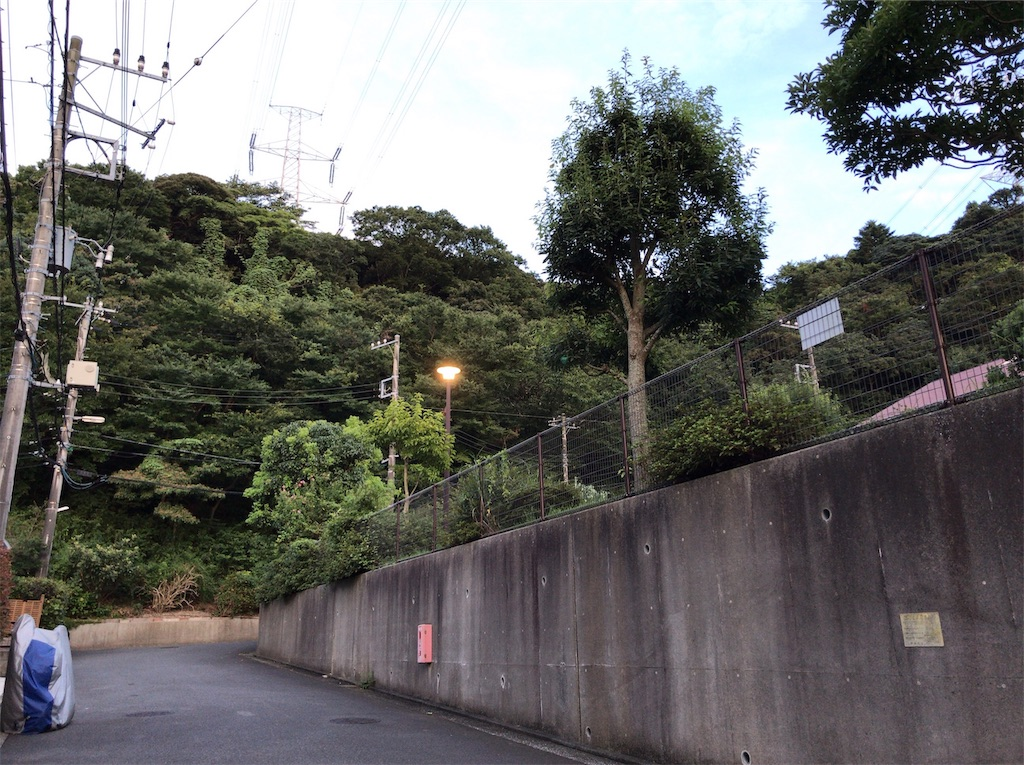 f:id:yokohamamiuken:20190902230706j:image