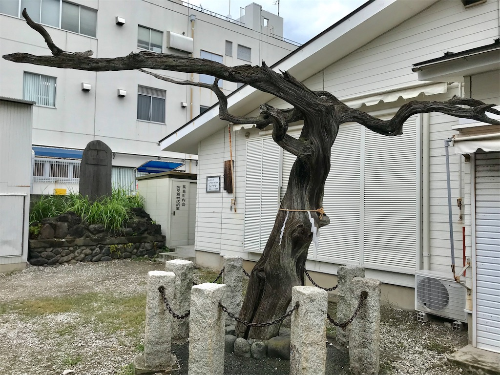f:id:yokohamamiuken:20191004083021j:image