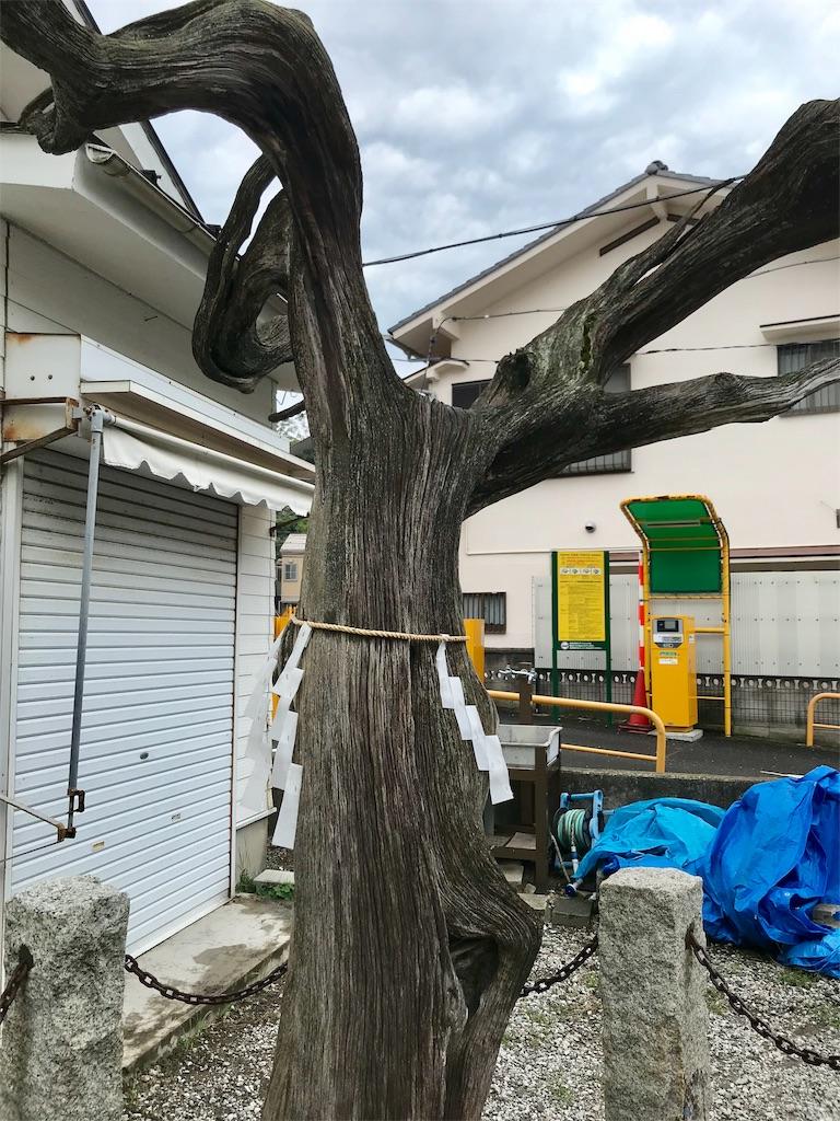 f:id:yokohamamiuken:20191004083025j:image