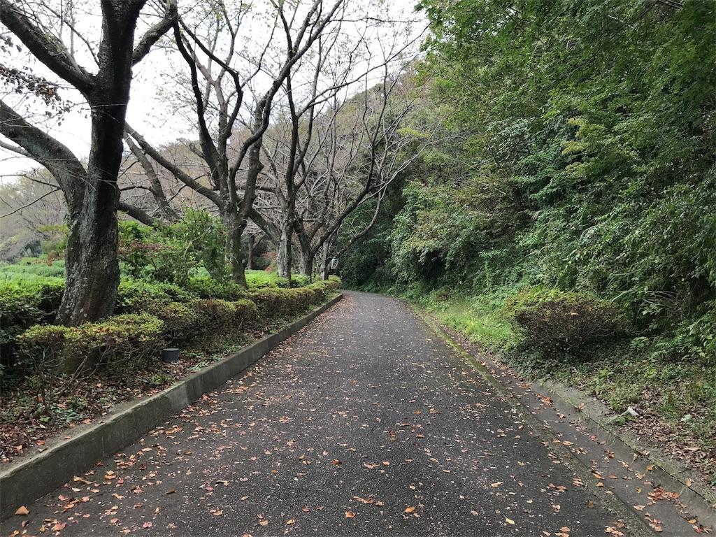 f:id:yokohamamiuken:20191004083305j:image
