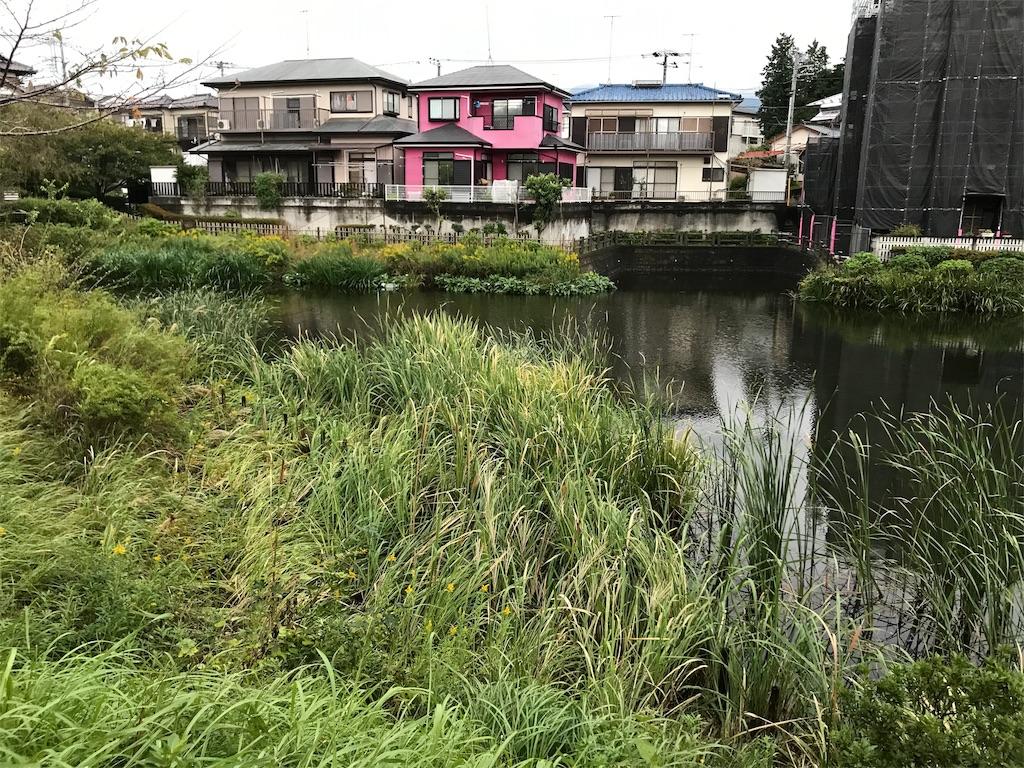 f:id:yokohamamiuken:20191019221523j:image