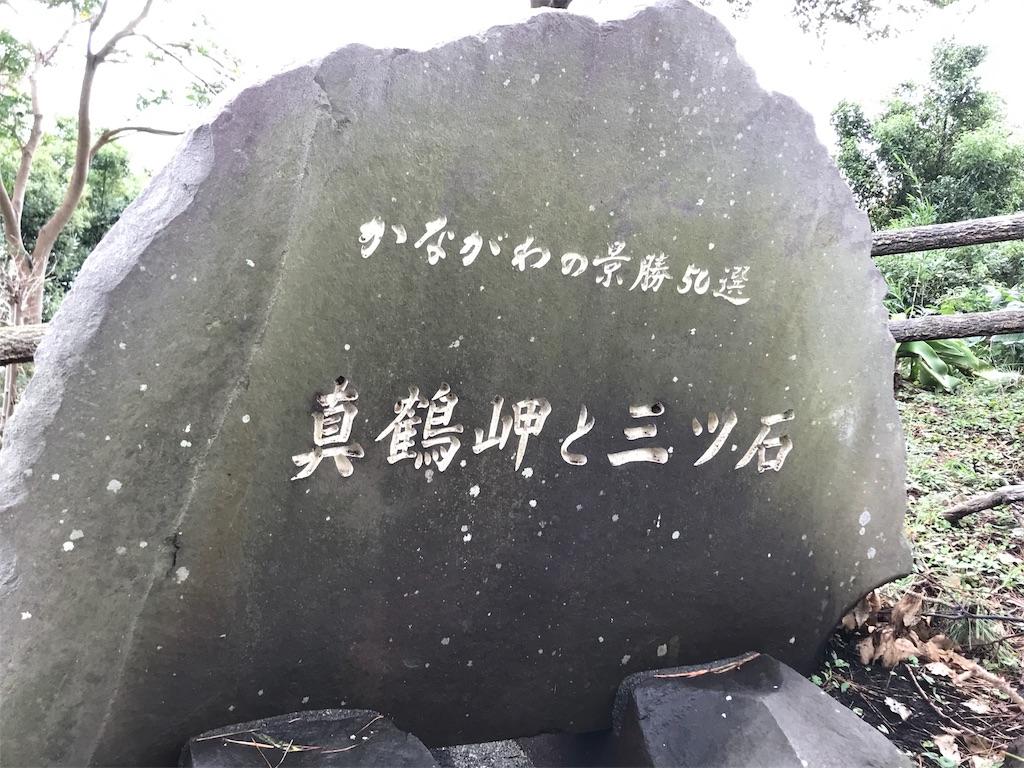 f:id:yokohamamiuken:20191019222302j:image