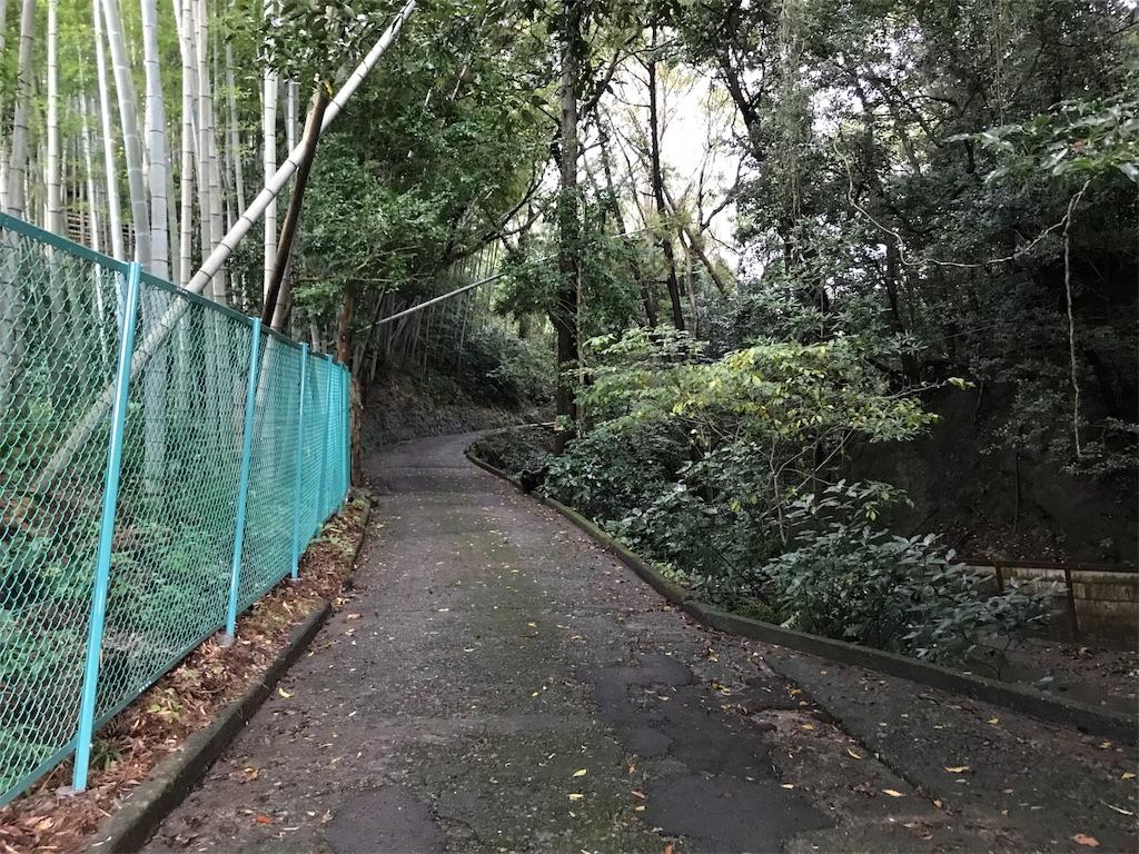 f:id:yokohamamiuken:20191019223922j:image