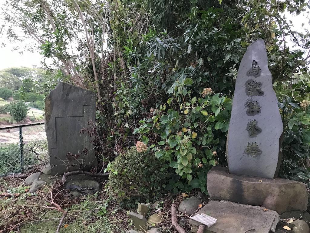 f:id:yokohamamiuken:20191019224109j:image