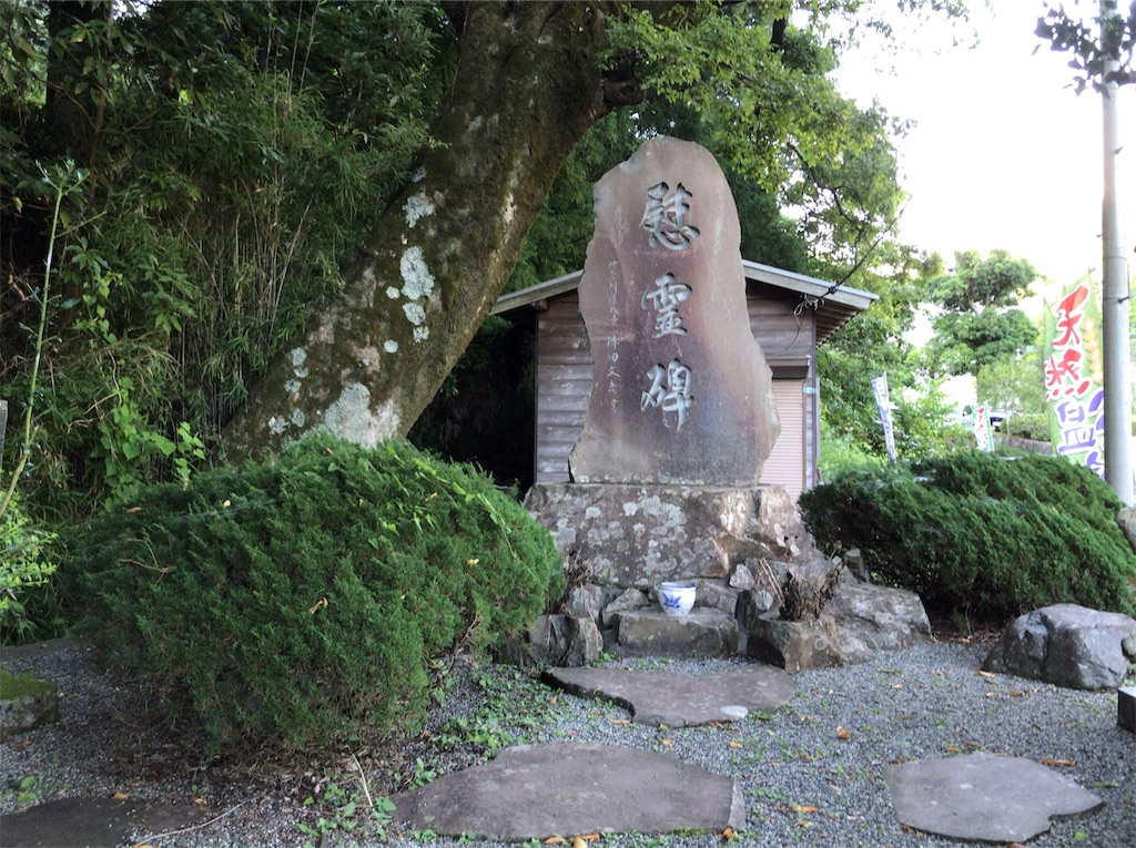 f:id:yokohamamiuken:20191020092229j:image