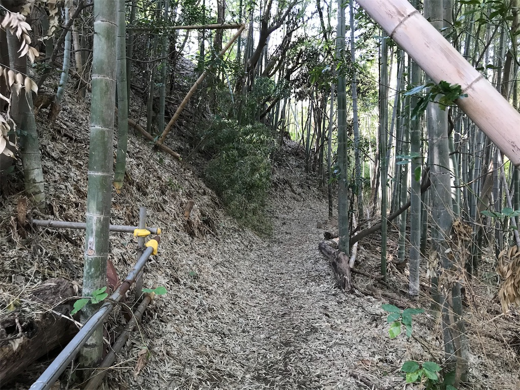 f:id:yokohamamiuken:20191101171122j:image