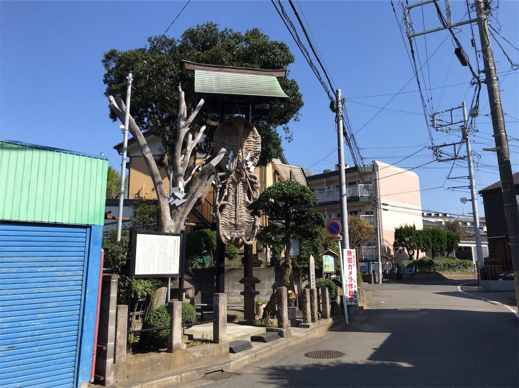 f:id:yokohamamiuken:20191101171439j:image