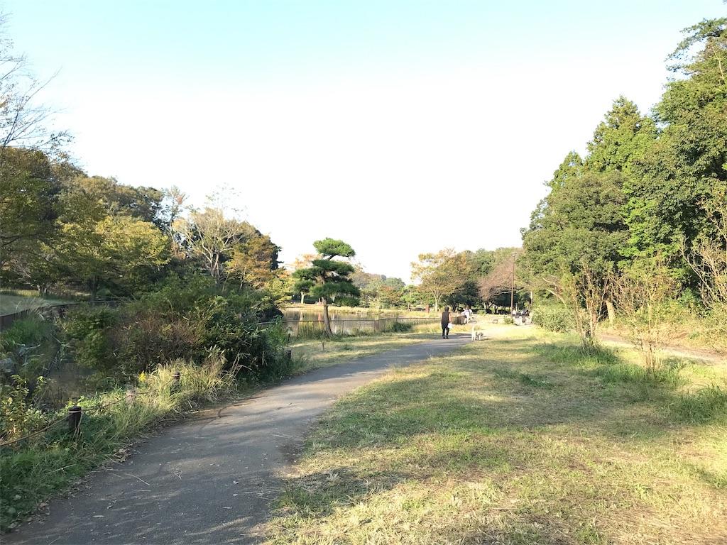 f:id:yokohamamiuken:20191101172926j:image