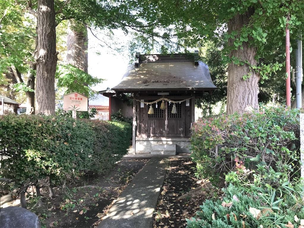 f:id:yokohamamiuken:20191108071218j:image